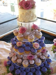 Gourmet Cupcake Shop in Sonoma County CA